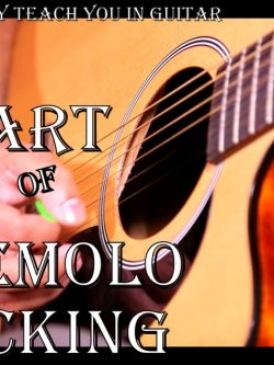 Guitar Book - Art of Tremolo Picking Guitarist techniques